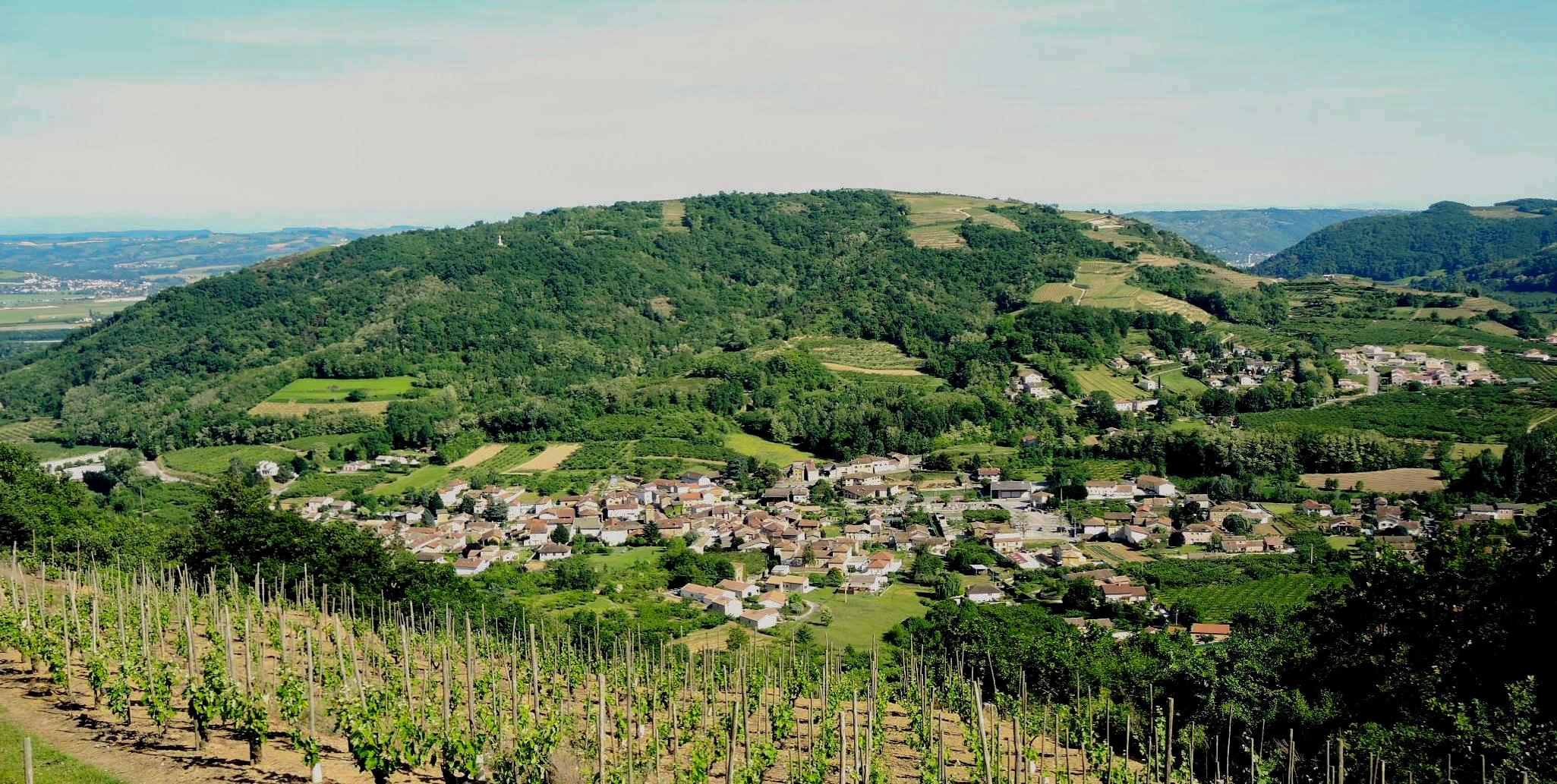 Vue sur Saint-Désirat